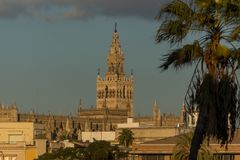Giralda tower seen from everywhere in Seville. The Giralda tower of the Seville Cathedral during sunset, photo taken from Calle/street Betis royalty free stock photography