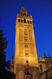 The Giralda Tower at sunset, Cathedral of Seville, Andalusia, Spain Stock Images