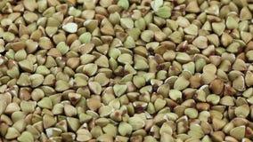 Girando el alforfón crudo, seque las semillas crudas almacen de metraje de vídeo