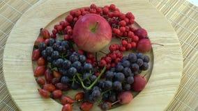Girando en uvas septentrionales de la placa de madera, escaramujos salvajes, manzanas y bayas de serbal almacen de video