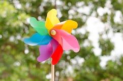 Girandola colorata Fotografia Stock