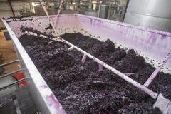 Girar arma o bombeamento sobre uvas do vinho tinto da fermentação, vale de McLaren, Sul da Austrália Fotos de Stock