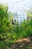 Girar com bobina uniu aos cais no lago. Foto de Stock