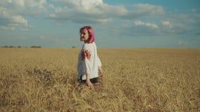 Girarsi femminile elegante nel giacimento di grano al tramonto stock footage