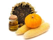 Girasol, aceite de girasol, maíz y calabazas en un fondo blanco Fotos de archivo libres de regalías