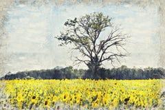 Girasol amarillo brillante, Tailandia Digitaces Art Impasto Oil Paint stock de ilustración