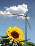 Girasol con la abeja delante de un molino de viento Imagen de archivo