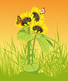 Girasol con la mariposa en el fondo amarillo Imágenes de archivo libres de regalías