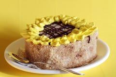 Girasol de la torta Imagen de archivo libre de regalías