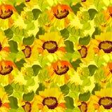 Girasol floral y fondo inconsútil del modelo de las hojas Foto de archivo libre de regalías