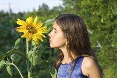 Girasol que huele de la muchacha Fotos de archivo libres de regalías