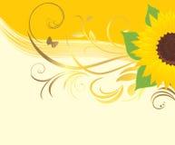 Girasole con l'ornamento floreale Fotografia Stock Libera da Diritti