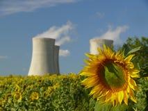 Girasole con la centrale nucleare Fotografia Stock Libera da Diritti