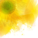 Girasole Fiore giallo soleggiato luminoso sul fondo dell'acquerello Fotografia Stock Libera da Diritti