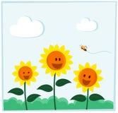 Girasole sorridente Fotografia Stock