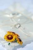 Girasole sul cuscino bianco dell'anello Fotografie Stock Libere da Diritti
