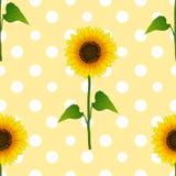 Girasole sulla Polka bianca Dots Yellow Background Illustrazione di vettore illustrazione di stock