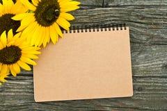 Girasoles Imágenes de archivo libres de regalías