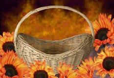 Girasoles anaranjados en una cesta Fotografía de archivo