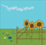 girasoles del vector Foto de archivo libre de regalías