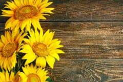 Girasoles hermosos en una tabla de madera Visión desde arriba Fondo con el espacio de la copia Fotos de archivo libres de regalías