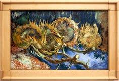 Girasoles que se marchitan del ` cuatro Imagen del ` de Van Gogh El museo del ller del ¼ de Kröller-Mà Otterlo netherlands imagen de archivo libre de regalías
