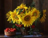 Girasoles y tomates Aún vida rústica de flores y del vegeta Foto de archivo