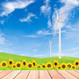 Girasoli con il generatore eolico sul campo di erba verde contro la s blu Fotografia Stock Libera da Diritti