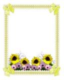 Girasoli floreali di primavera del bordo Fotografia Stock