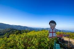 Girasoli messicani su Tung Bua Tong nel Nord della Tailandia immagine stock libera da diritti