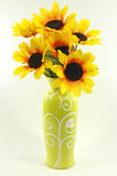 Girasoli in vaso isolato Fotografia Stock Libera da Diritti