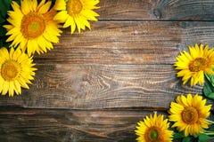 Girassóis bonitos em uma tabela de madeira Vista de acima Fundo com espaço da cópia Imagem de Stock Royalty Free