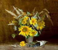 Girassóis com sementes em um saco de papel Fotografia de Stock Royalty Free