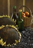 Girassóis e sementes de girassol maduros Imagens de Stock Royalty Free