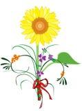 Girassol Ilustração Royalty Free