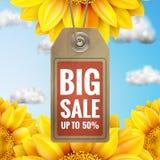 Girassol com céu azul - venda do outono Eps 10 Fotografia de Stock Royalty Free