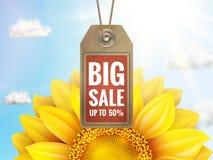 Girassol com céu azul - venda do outono Eps 10 Imagem de Stock Royalty Free