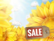 Girassol com céu azul - venda do outono Eps 10 Imagem de Stock