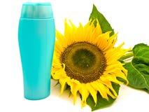 Girassol e frasco imagem de stock
