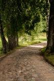 Gire a estrada do campo Imagem de Stock Royalty Free