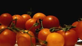 Gire tomates muitos video estoque