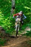 Giri del ciclista in mountain-bike attraverso la foresta verde Fotografie Stock Libere da Diritti