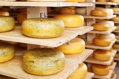 Giri del formaggio nel magazzino della fabbrica immagini stock