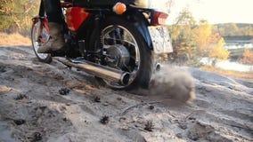 Giri del motociclista su una strada sabbiosa nella foresta stock footage