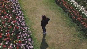 Giri della ragazza su un campo del tulipano stock footage