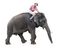 Giri felici del turista su un elefante Immagini Stock