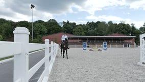 Giri giovani di un tipo su un cavallo archivi video