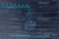 Giri intorno alle idee d'elaborazione del cervello (lampadine), overfl di informazioni Fotografia Stock Libera da Diritti