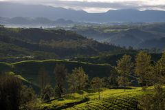 Landscape view from giri peak, indonesia. Giri peak located at pengalengan, west java, indonesia. a tea plantation area surrounded with beautiful landscape royalty free stock photos