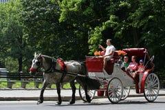 Giri trainati da cavalli del carrello in Central Park Fotografia Stock Libera da Diritti